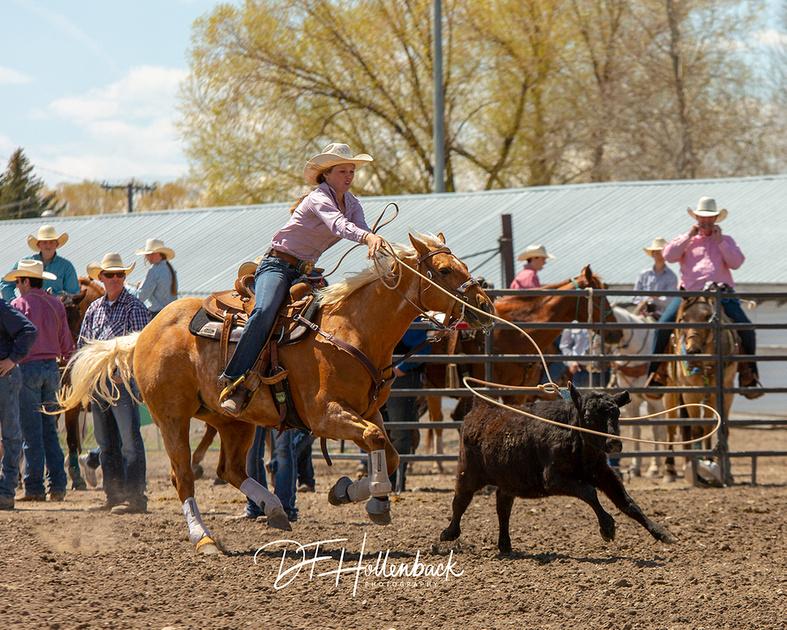 David Hollenback 2019 Jr High School Rodeo Finals