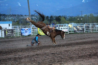 UM College Rodeo Perf Saddle Bronc May 9 2014