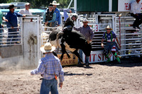 Lincoln Open Rodeo Bulls 7-6-2014