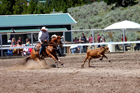 Lincoln Open Rodeo Calf Roping - Steer Wrestling 7-6-2014